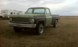 1975 Chevrolet Other Pickups Pickup Truck